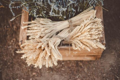 Caja de madera con espigas y lavanda
